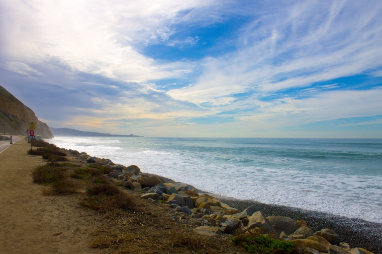 Torrey Pines January 2016 076